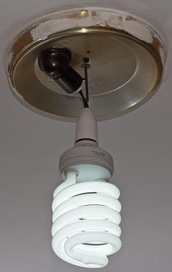 Big bare bulb