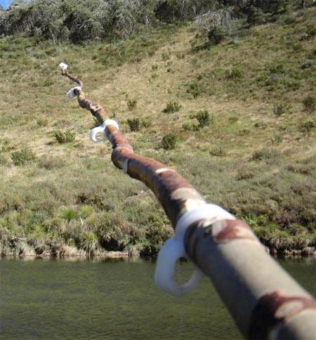 Polycaprolactone fishing-rod eyelets
